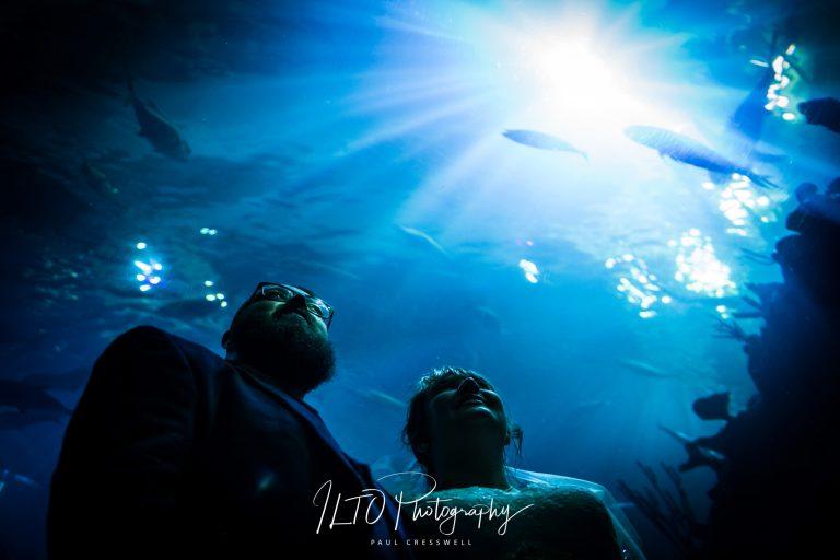 Wedding Portfolio, The Deep Hull Wedding Photography, ILTO Photography